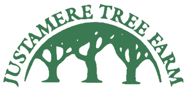 Justamere Tree Farm on the Radio