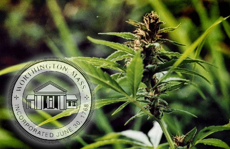 Planning Board Notice of Public Hearing – Marijuana Bylaw